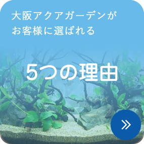 大阪アクアガーデンがお客様に選ばれる5つの理由