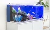海水熱帯魚水槽のレンタル・リースの料金