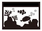 海水魚水槽設置事例