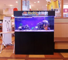 兵庫県 加西市 飲食店様 サムネイル画像