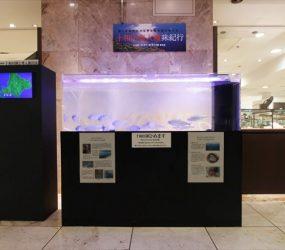イベントにインパクトのある展示水槽を設置サムネイル画像