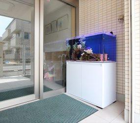 保育園様 エントランスに可愛い水槽をサムネイル画像