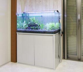 淡水水槽 90㎝ 個人宅様 サムネイル画像