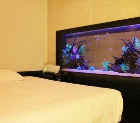 ホテル客室の180㎝大型水槽!サムネイル画像