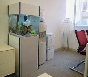 オフィスの憩いにキュービックな海水水槽が登場!サムネイル画像