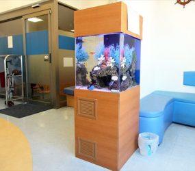 待合室のインテリアに最適ですサムネイル画像