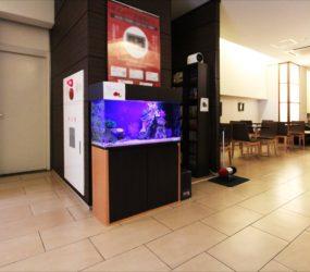 海水魚水槽 90cm 宿泊施設様サムネイル画像