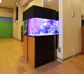 60cm 淡水魚水槽+海水魚水槽 保育園様サムネイル画像