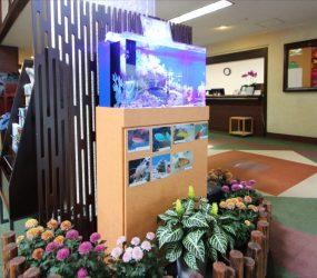 海水魚水槽 60cm ゴルフ倶楽部様 エントランスサムネイル画像