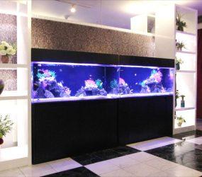 海水魚水槽 120cm 2台 ホテル様 受付サムネイル画像
