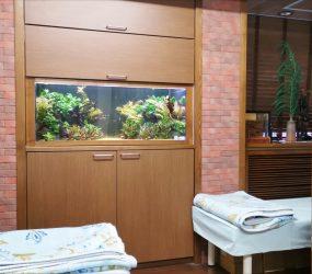 淡水魚水槽 120cm リセット 病院様サムネイル画像