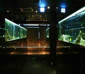 海水魚水槽 200cm 中央区 メンテナンス 飲食店様サムネイル画像