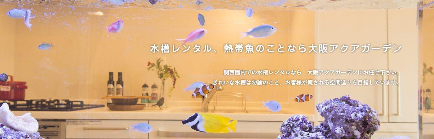 水槽レンタル、熱帯魚のことなら大阪アクアガーデン