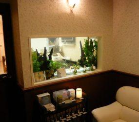 清涼感が伝わる心地良い空間ですサムネイル画像