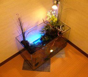 動きのある水槽でエントランスを飾りますサムネイル画像