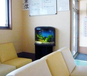 クリニックの60㎝半円柱淡水水槽サムネイル画像