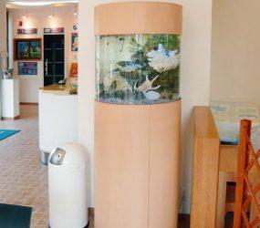 水槽より温かみが伝わりますサムネイル画像
