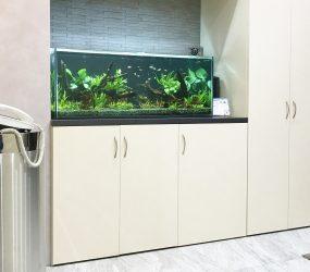 120cm淡水魚水槽 大阪市オフィスビルサムネイル画像