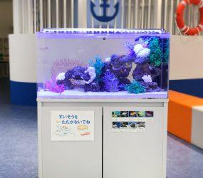 90cm海水魚水槽 兵庫県神戸市 子育て支援施設サムネイル画像